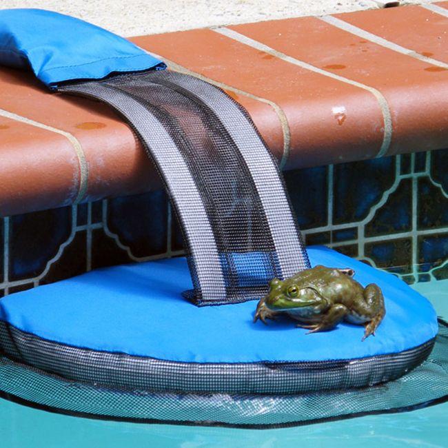 Frog Log ECOsmarte Online Store